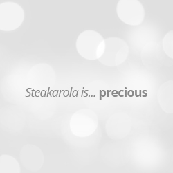 STEAKAROLA | Smart Model | 350mm